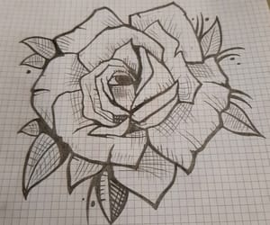draw, drawing, and rosa image