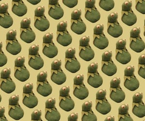 kermit and wallpaper image