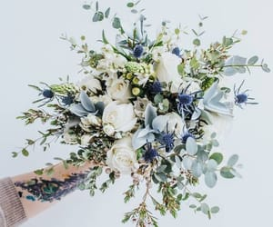 blue, spring, and white roses image