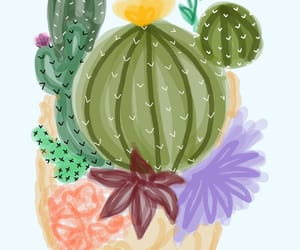 cactus, bbbbbosua, and color image