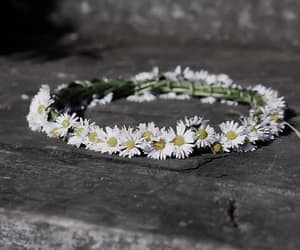 daisies, garland, and Wild Flowers image