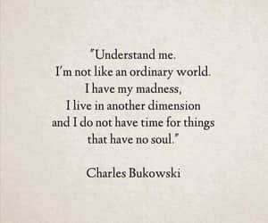 quotes, soul, and charles bukowski image
