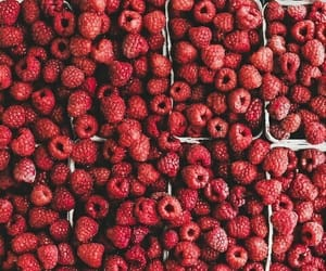 berries, food, and summer image