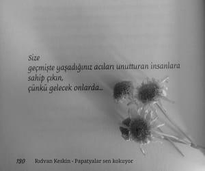 kitap, türkçe sözler, and papatyalar sen kokuyor image