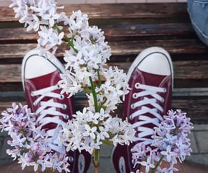 converse, happy, and home image