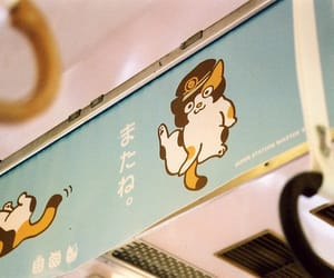 japan, cat, and train image