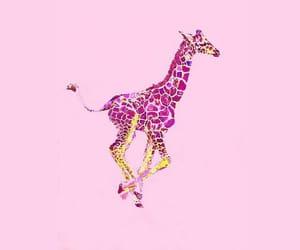 art, giraffe, and girly image
