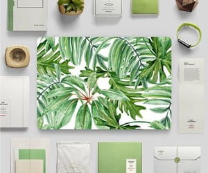 apple, green, and leaf image