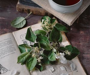 aesthetic, book, and flowers image