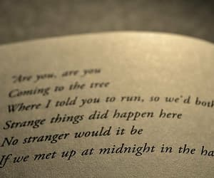 book, hanging tree, and the hunger games image