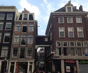 amsterdam, 😋, and nederland image