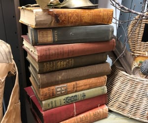 antique, bibliophile, and book spines image