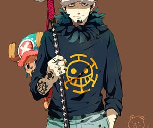 chopper, one piece, and Law image
