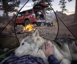 adventures, car, and fire image