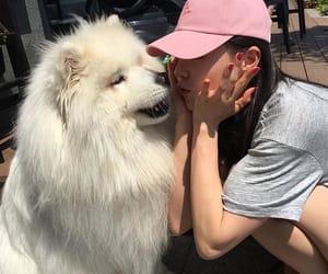 dog, girl, and pink image