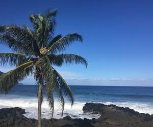 beautiful, hawaii, and Sunny image