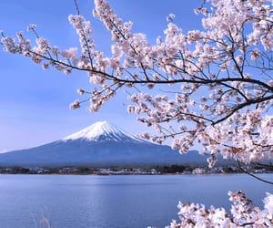 fuji, japan, and nature image