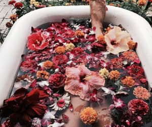 flowers, bath, and floral image