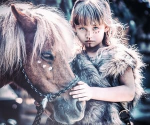 animal, fantastic, and horse image