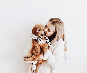 girl, animals, and love image