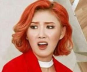 k-pop, meme, and kpop memes image