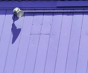 lavender, photography, and wall image