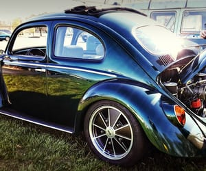 1960s, bug, and volkswagen image