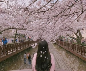 flowers, girl, and korean image