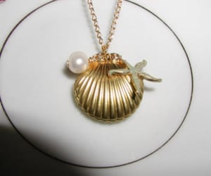 shell, shell necklace, and seashell necklace image