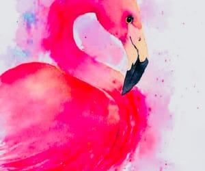 art, drawing, and flamingos image