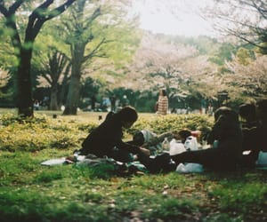friends, nature, and picnic image