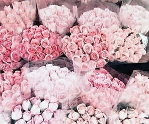 beautiful, flowers, and shop image