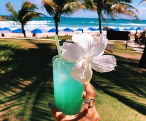 drink, summer, and tropical image