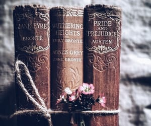bibliophile, bookworm, and photography image
