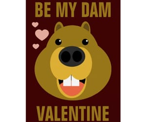 beavers, funny, and greeting cards image