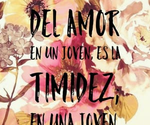 fall in love, frase, and phrases image