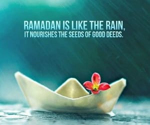 muslim, quotes, and allah image