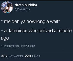 funny, jamaica, and jamaican image