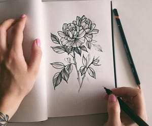 art, Art Book, and flowers image