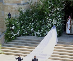 british, flowers, and prince harry image