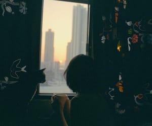кот, утро, and город image