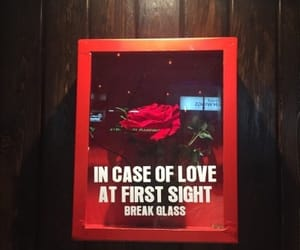 alternative, love at first sight, and red image