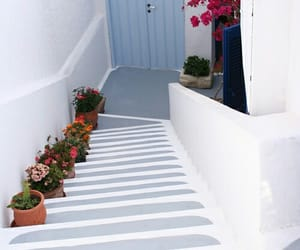 Greece, flowers, and white image