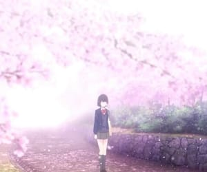 anime, cherry blossom, and pink flowers image