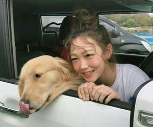 dog, korean girl, and ulzzang image