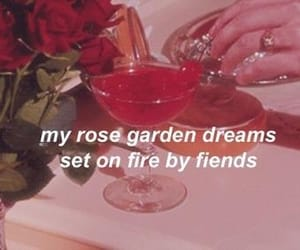 cherry, aesthetic, and quotes image