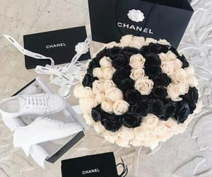 rose, roses, and chanel image