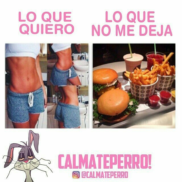 memes, risas, and cuerpo image