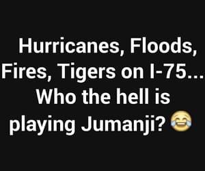 fires, jumanji, and hurricanes image
