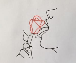 drawing, rose, and red image